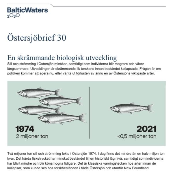 BalticWater 2030: Östersjöbrief 30