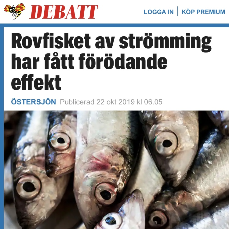 Expressen debatt: Rovfisket av strömming har fått förödande effekt