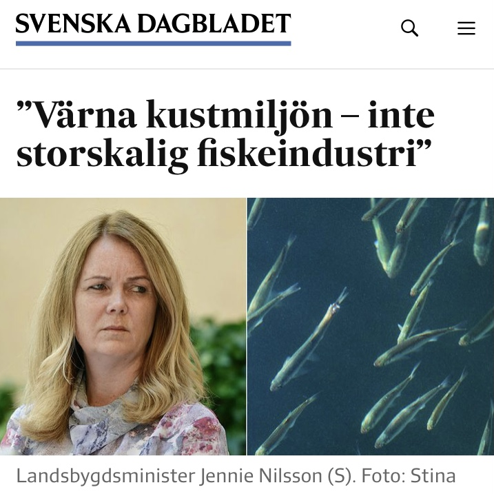 SVD- Värna kustmiljön- inte storskalig fiskeindustri
