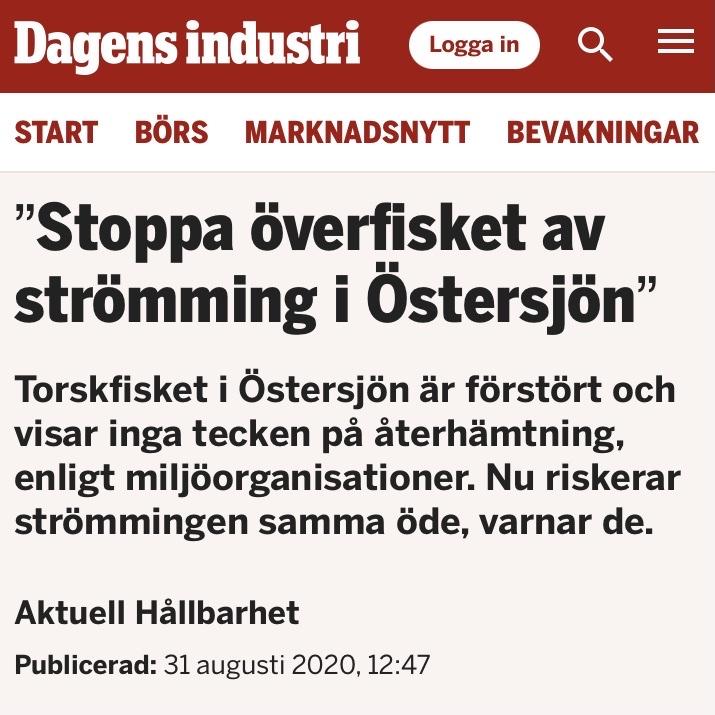 Hela Hälsingland: Kort sagt: strömming i Bottenhavet