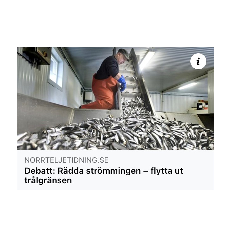 BalticWater 2030: Östersjöbrief 31