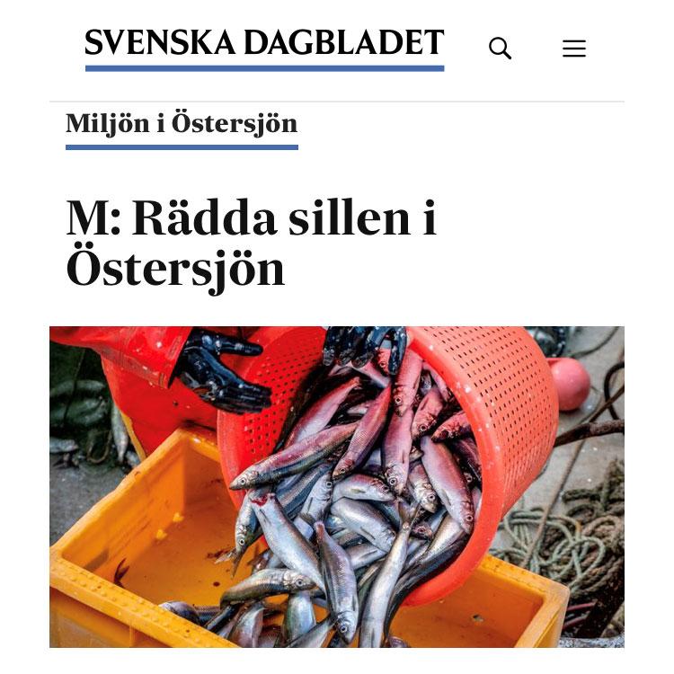 SVD debatt: Rädda sillen i Östersjön